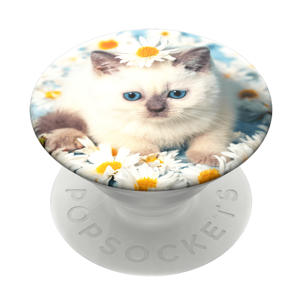 Purr fect flower 02 grip