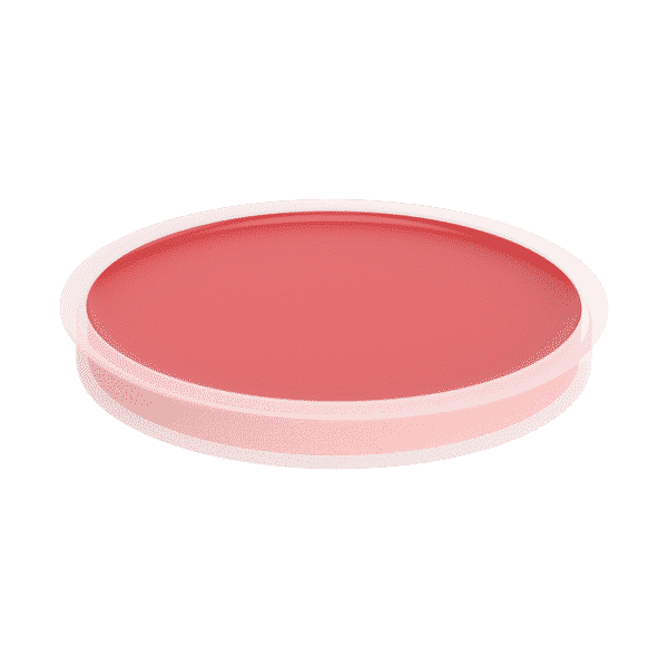Strawberry feels 10 perspective balm